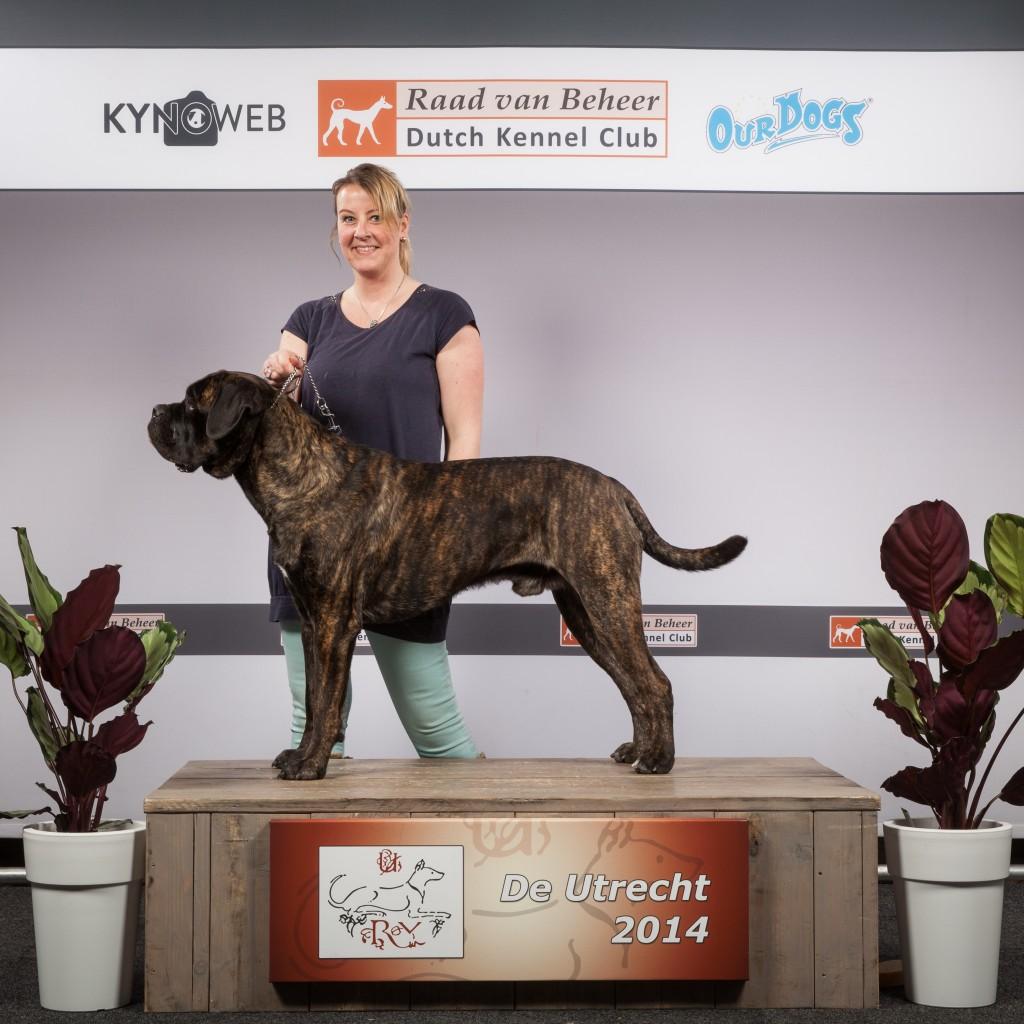 Vin-Nederlands-kampioen-1024x1024